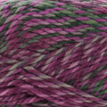 Cascade Yarns Pacific Chunky Color Wave - Grapevine (410)