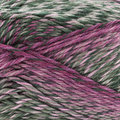 Cascade Yarns Pacific Color Wave - Grapevine (318)
