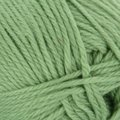 Cascade Yarns Pacific - Spring Green (16)