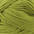 Cascade Yarns Sateen Worsted - Palm (33)