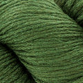 Cascade Yarns Venezia Worsted Discontinued Colors - Forest (127)