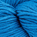Cascade Yarns Venezia Worsted Discontinued Colors - Turquoise (161)