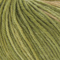 Classic Elite Yarns Liberty Wool Print Discontinued Colors - Whispering Wind - June (78126)