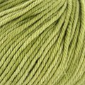Classic Elite Yarns Mesa - Green Chile (4281)