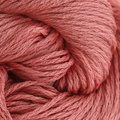 Classic Elite Yarns Provence - Peachy (5812)