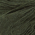 Classic Elite Yarns Silky Alpaca Lace Discontinued Colors - Deep Green (2421)