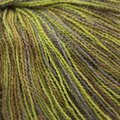 Classic Elite Yarns Silky Alpaca Lace Handpaints Discontinued Colors - Olive Moss (2497)