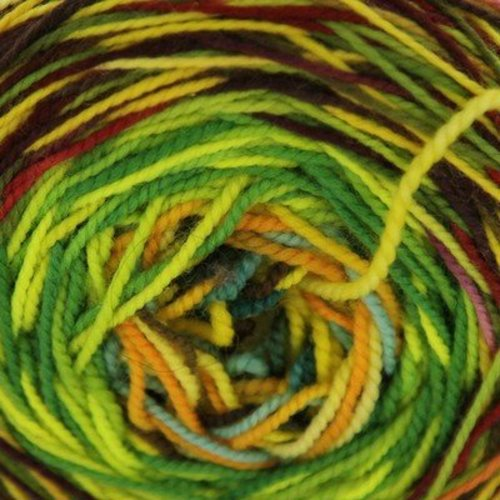 Done Roving Yarns Frolicking Feet Transitions -  ()