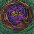 Done Roving Yarns Frolicking Feet Transitions - Acadia (021)