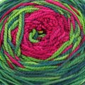 Done Roving Yarns Frolicking Feet Transitions - Easter Cactus (024)