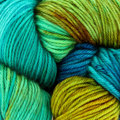 Dragonfly Fibers Traveller - Coral Reef (CORALR)