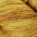 Dream in Color Kettle Dyed Smooshy with Cashmere - Gold Experience (10)