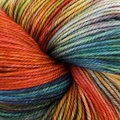 Dream in Color Smooshy - Anything Goes (903)