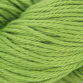 Fibra Natura Radiant Cotton - Lime Green (813)