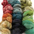 Frabjous Fibers Three Feet of Sheep - BFL-Silk Tropical Collection (BFLSILKTRO)