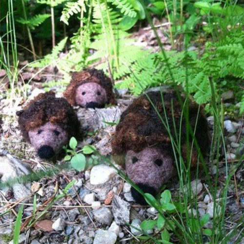 Going Gnome Needle Felting Kit - Prickle Of Hedgehogs (HEDGEHOGS)