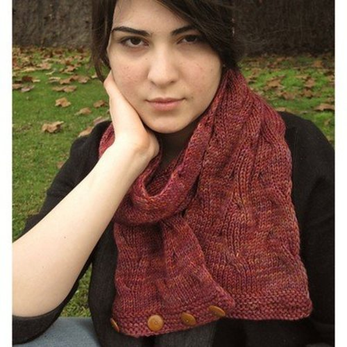 Grace Akhrem Reversible Tangled Branches Cowl PDF -  ()