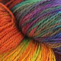 Great Adirondack Organic Cotton DK - Toucan (TOUCA)