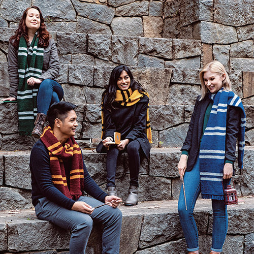 Harry Potter: Knitting Magic -  ()