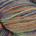 Juniper Moon Farm Findley DK Dappled - Sheer Bliss (202)