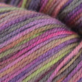 Juniper Moon Farm Findley DK Dappled - Lady Luck (207)