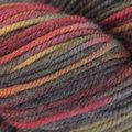 Juniper Moon Farm Findley DK Dappled - Sundance (211)
