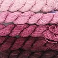 Koigu Kersti Cashmere Gradient Kit (5 pack) - Light Pink To Dark Magenta (MAGENTA)