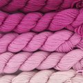 Koigu Kersti Cashmere Gradient Kit (5 pack) - Light Pink To Bright Pink (PINK)