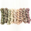 Koigu KPPPM Painter's Fade Palette Pack - Sensitive Solo (SENS)