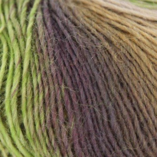 Lang Mille Colori Baby - Rust, Lime, Purple, Pale Blue (56)
