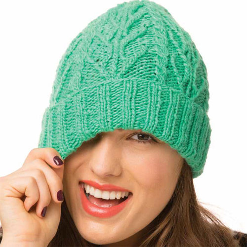Noro Cabled Hat PDF -  ()