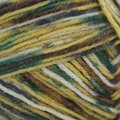 On-Line Supersocke 100 4-Ply Graffiti Color (with Aloe) - Gold, Dark Green, Brown (1993)