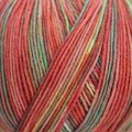 On-Line Supersocke 100 4-Ply Silk Color - Coral Multi (2047)