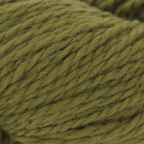 Plymouth Yarn 3137 Fern Grotto Shawl Kit - Moss Green (1)