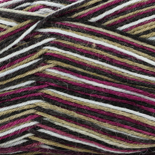 Plymouth Yarn Andes Socks - Vineyard Mix (011)