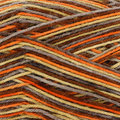 Plymouth Yarn Andes Socks - Copper Mix (017)