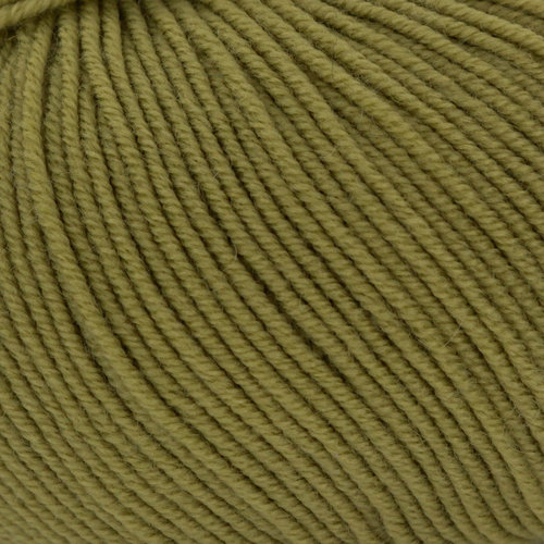 Plymouth Yarn Cammello Merino - Green (24)