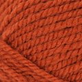 Plymouth Yarn Encore Chunky - Spiced Pumpkin (0456)