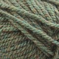 Plymouth Yarn Encore Chunky - Meadow Heather (1446)