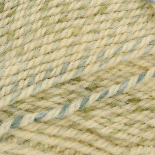Plymouth Yarn Encore Colorspun Discontinued Colors - Champagne-Blue (7009)