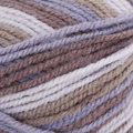Plymouth Yarn Encore Colorspun Discontinued Colors - Amythest (7151)