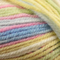 Plymouth Yarn Encore Colorspun Overstock Colors - Pastels (7650)