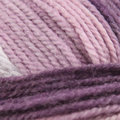 Plymouth Yarn Encore Colorspun Overstock Colors - Grape Ombre (7659)