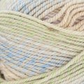 Plymouth Yarn Encore Colorspun Discontinued Colors - Pastel With Tan (7712)