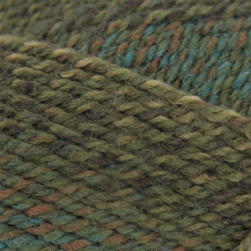 Plymouth Yarn Encore Colorspun - Army (7595)