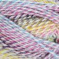 Plymouth Yarn Encore Colorspun - Very Bright Kids (7722)