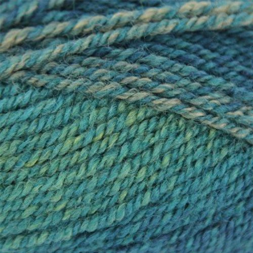 Plymouth Yarn Encore Colorspun - Turquoise (7765)