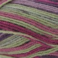 Plymouth Yarn Encore Colorspun - Fuchsia, Plum, Sage (7914)