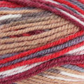 Plymouth Yarn Encore Colorspun - Southwest Mix (8125)