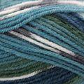 Plymouth Yarn Encore Colorspun - Teal Mix (8126)